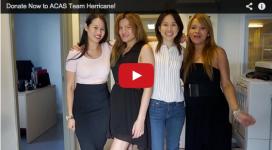 Team Herricane 2014